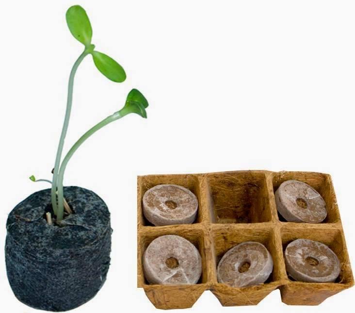 $$$$$ Viên nén ươm hạt làm từ xơ dừa